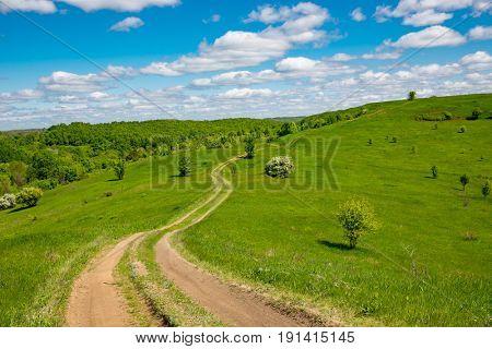 path across green meadow on hill