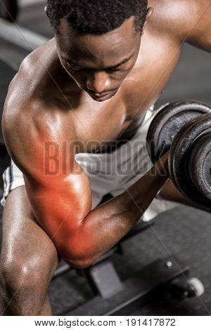 Dedicated shirtless male athlete doing excercise with dumbbells at gym