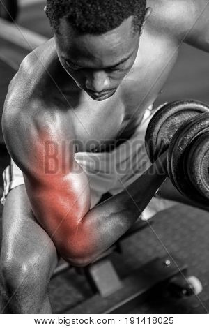 Dedicated shirtless male athlete doing excercise with dumbbells while sitting at gym