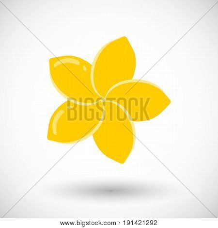 Frangipani vector flat icon Flat design of plumeria flower with round shadow vector illustration