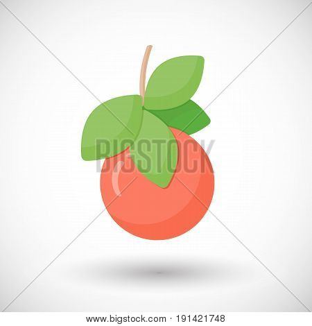 Grapefruit vector flat icon Flat design of food or tropical harvest objects with round shadows cute vector illustration