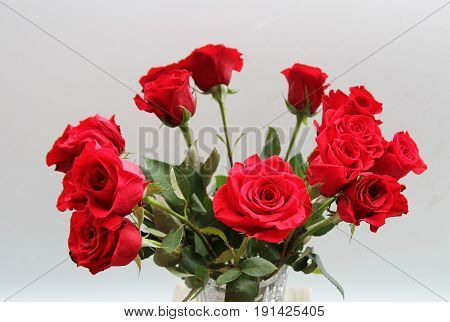 The bunch of red flowers on grey background