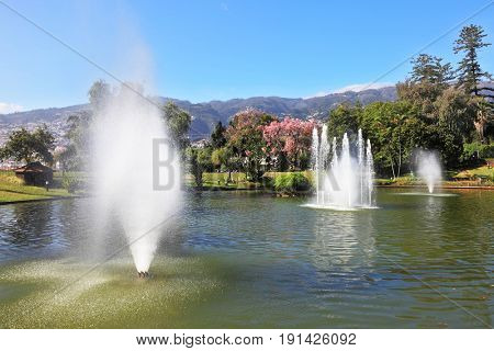 Magnificent park at the resort. The lake with a fountain and the white swans around. At the water fountain jets shining magnificent rainbow