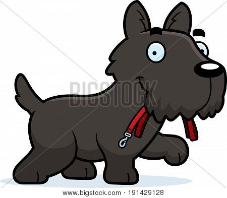 Cartoon Scottie Leash