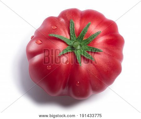 Pink Ribbed Tomato, Paths, Top View