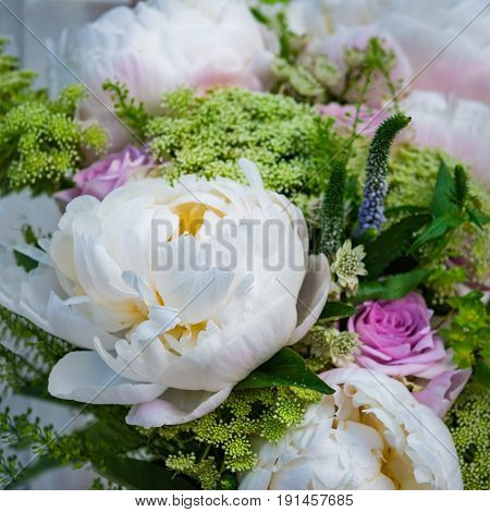 Bouquet of flowers from big peonies pastel roses scented peach stocks and wild meadowy foliage on light background