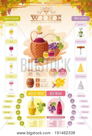 Wine infographic icons. Vector alcohol drink icon set, isolated background. Diagram flyer design. Diet food vitamin table, red, white, rose, sparkling glass, Europe map, vineyard. Flat illustration