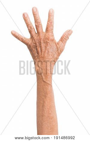 hands of the old woman isolated on white background