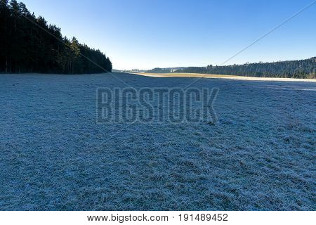 Wintertime in the Black Forest. A field covered by frost at the forest edge.
