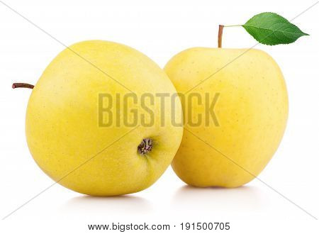 Ripe Yellow Apple Fruits With Leaf Isolated On White