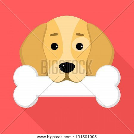A beagle dog holds a bone in his mouth against a red background. A place for your projects. A sweet animal. Cartoon style. Vector illustration in a flat style. EPS 8