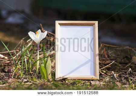 wood frame mock up with flowers decoration