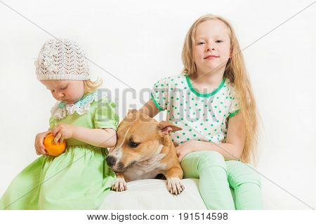 two little girls and dog on the isolated background
