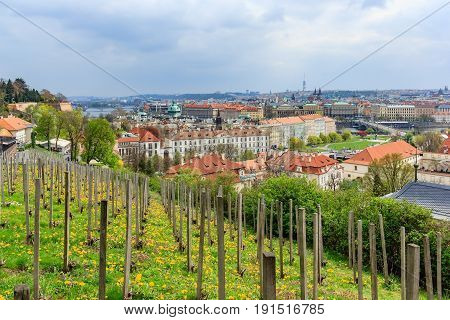 View and cityscape of Prague as seen from the Prague Castle or Prazsky hrad in Czech Prague Czech republic
