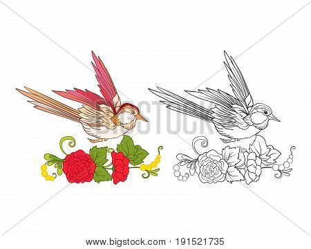 Flowers and swallow. Set of colored sample and outline drawing.  Outline hand drawing coloring page for adult coloring book. Stock line vector illustration.