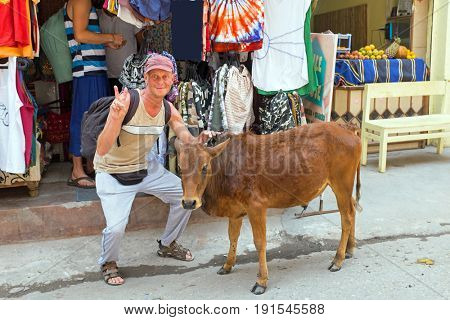Tourist with a cow in front of a clothing shop in Laxman Jhula India