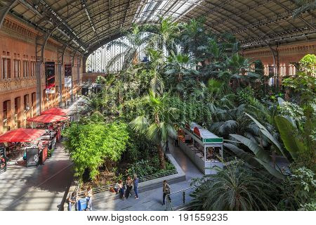 MADRID, SPAIN - MAY 24m 2017: This is a winter garden in the waiting hall of the railway station Atocha.