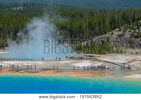 Grand Prismatic Springs Yellowstone National Park Wyoming