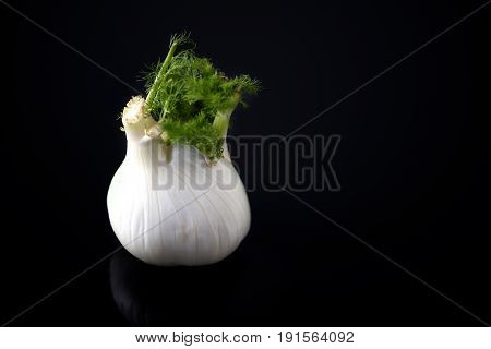 Fresh Vegetable. Vegetarianism. Fennel On The Glass Background