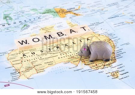 A concept photo with a toy wombat and letters on the map.