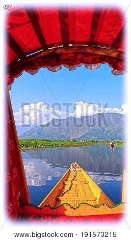 view of the dal lake from a shikara