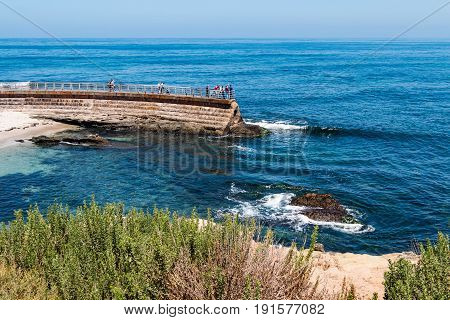 LA JOLLA, CALIFORNIA - JUNE 16, 2017:  Foliage atop a cliff overlooking the Children's Pool, with visitors on top of the sea wall, built as a protective barrier from the ocean waves in 1931.