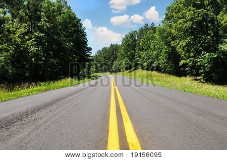 Road in a rural area with trees and blue sky