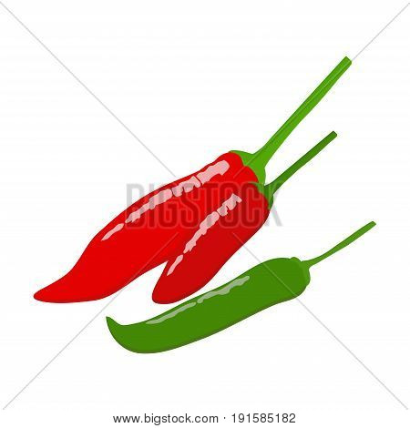 Chilli  flat design, Chilli isolated on white background. vector illustration.