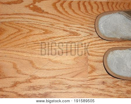 Household slippers displayed on a wooden floor indoors.