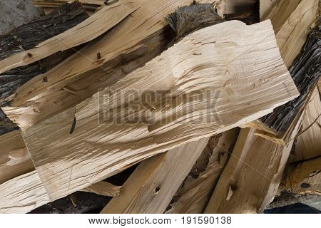 Light wood logs cut for fire place