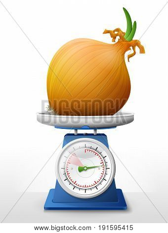 Common onion on scale pan. Weighing shallot bulb with small leaves on scales. Best vector illustration about agriculture vegetables cooking health food gastronomy