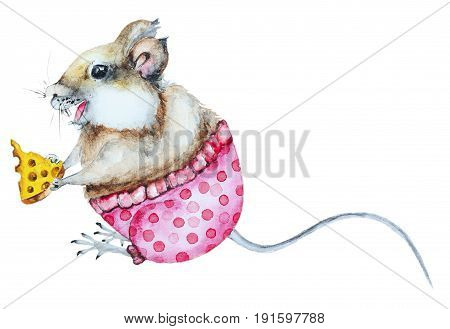 Watercolor cartoon mouse with cheese and pants on white background. Funny mouse eating cheese.