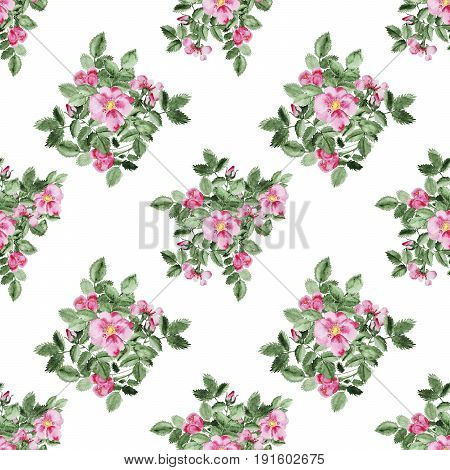 Watercolor pink Briar blossom flower, leaf and branch seamless pattern isolated on white. Perfect for DIY