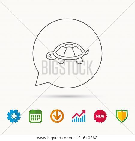 Turtle icon. Tortoise sign. Tortoiseshell symbol. Calendar, Graph chart and Cogwheel signs. Download and Shield web icons. Vector