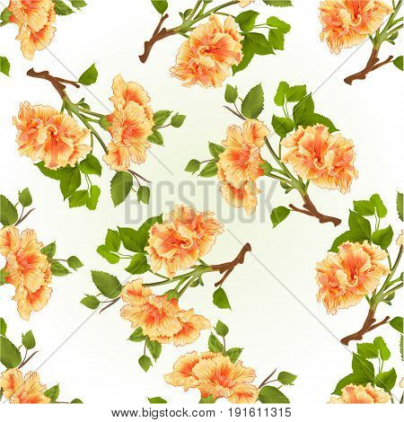 Seamless texture branch yellow hibiscus tropical flowers on a white background vintage vector illustration hand draw