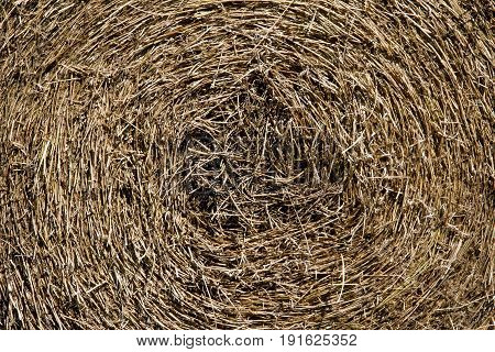 Patterns of a round bale make a hay background