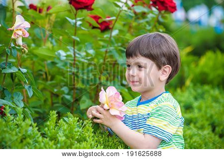 A Portrait Of A Boy Smiling And Smelling A Rose.