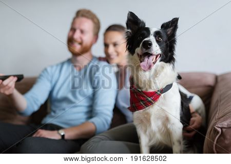 Beautiful couple watching television at home with their dog on sofa