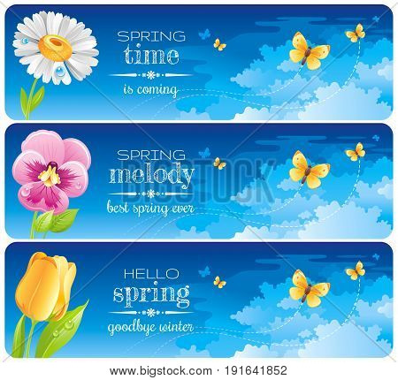 Spring banner set. Easter, Mothers day, Birthday, Wedding invitation. Daisy, pansy, tulip flower, butterfly, blue sunny sky. Isolated modern vector illustration. Happy springtime greeting card border