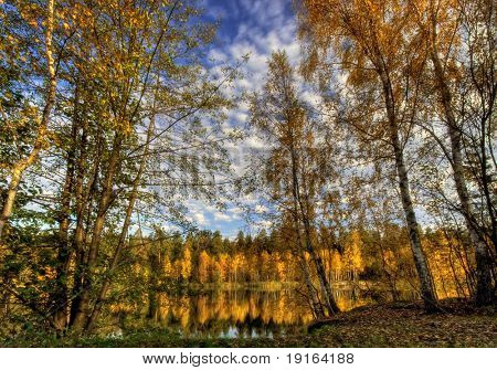 Colors of autumn river. It is photographed in Russia. 60 kilometers on East from Moscow. Autumn. poster