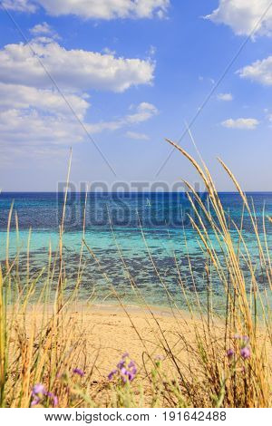 Summertime:holidays to the sea in Italy.Typical Apulia seascape: between marine dunes appears the sandy beach and surfer on the clear blue water.