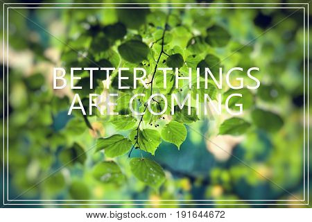 Better Things Are Coming. Green Leaves Background.