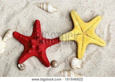 Starfish On Sand Like Two Brothers.summer Background
