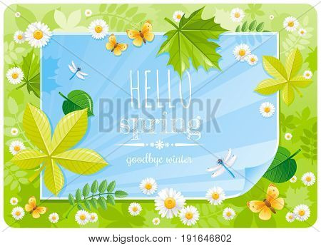 Hello Spring banner border poster. Forest, grass, blue sky, daisy flower, leaf, butterfly. Springtime nature. Paper sheet copyspace. Vector illustration. Flat greeting card background, text letter