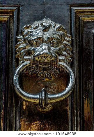 Door With Brass Knocker In The Shape Of A Lion's Head, Beautiful Entrance To The House