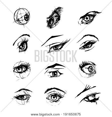 Set of female eyes and brows. Vector illustration in ink hand drawn comics style.