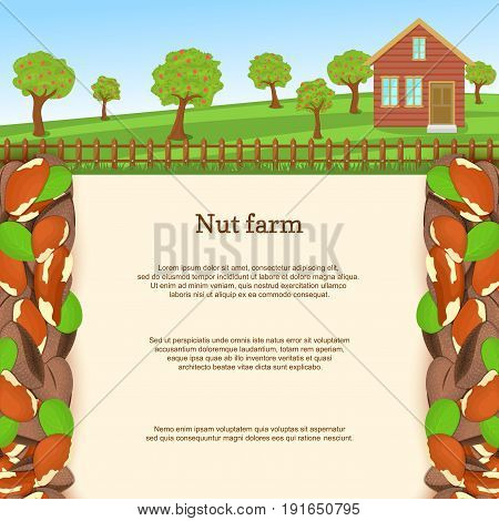 Vector illustration of a brazilian nut farm. Brazilnut border. House, fence, fruit, trees, background with paper texture for menu design, food packaging, breakfast, diet, detox