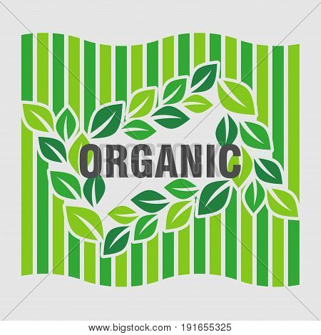 logo ecology green leaves design of Ecology organically pure product flat design image