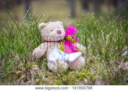 Children's toy waiting for the newborn. Teddy bear in the brushwood.