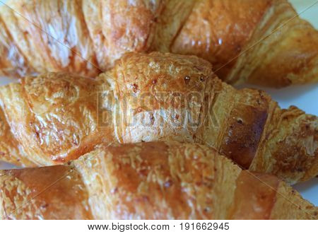 Closed up Texture of Fresh Baked Whole Wheat Croissant Pastries
